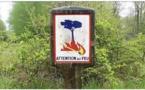 Le brûlage des déchets verts et l'écobuage interdits en Corse dès ce 1 juillet