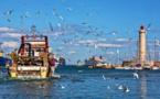 Mare latinu : Les pêcheurs méditerranéens français annoncent des actions le 15 décembre.