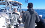 Mise en place d'une télédéclaration pour la pêche maritime de loisir dans la RNBB - Saison 2021