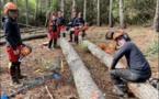 SARTÈ  Les élèves du Campus Agri dans les pas d'un exploitant forestier