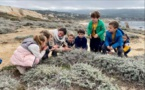 LUMIU  Les enfants à la découverte de la pointe de Spanu