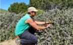 MONTICELLU   Le parc de Saleccia,un environnement à préserver