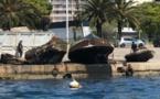 Opération de dépollution dans le port d'Ajaccio