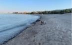La pollution liée au dégazage sauvage en Corse pourrait-elle arriver sur les plages de la Côte d'Azur ?