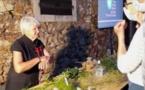 GALERIA  Vertus et dangers des plantes nustrale à la Tour de Galeria