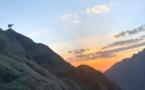 La photo du jour : mouflon et lever de soleil sur la vallée de l'Ascu