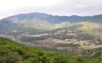 Gestion des estives, préservation et développement de la montagne : l'État ne peut pas être seul à la manœuvre selon Femu a Corsica