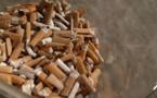 Corse : Ces milliers de mégots que ramassent ces quelques bénévoles...