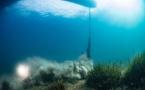 Posidonies : près de 500 infractions en Méditerranée française