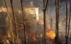 EDF fait appel de sa condamnation suite aux incendies d'Auddè et de la vallée de l'Ortolu
