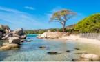 Mare latinu : Un diplôme universitaire « restauration écologique marine ».