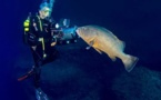 Mare latinu : Albert Saladini chasseur d'images de la mer à la scène.