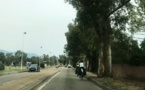"""Intercommunalité Sud-Corse : """"Inscrire notre territoire dans les transitions de mobilité"""""""