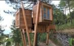 Corte : des cabanes dans les arbres