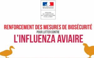 Recommandation sur la Grippe Aviaire