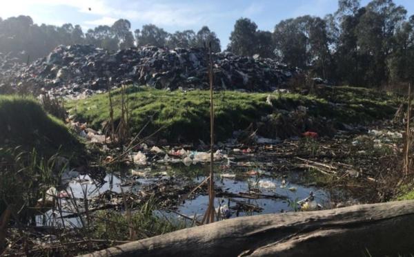 Déchets : le quai de transfert de Capo di Padule sature, quels risques pour la population et l'environnement ?