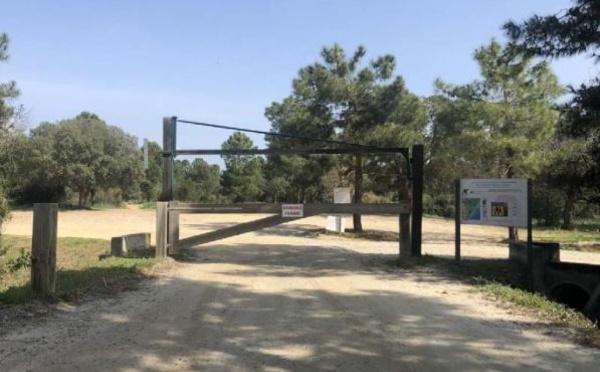La forêt de Pinia totalement fermée