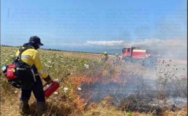 A GHISUNACCIA  Un brûlage dirigé pour protéger le domaine de Pinia