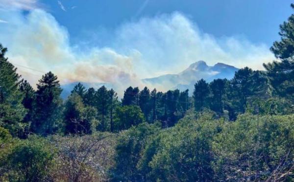 FIUM'ORBU CASTELLU  Incendies : des avancées pour protéger les zones habitées