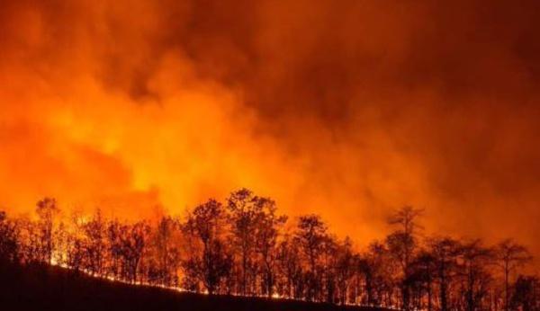 Incendies : La Sardaigne appelle à l'aide, la Corse répond