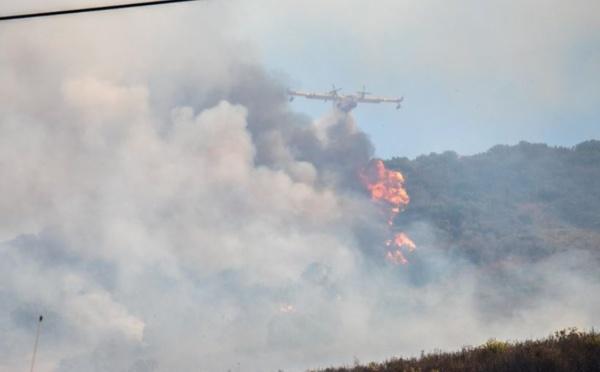 Incendies d'Alata et d'Appiettu : 30 hectares parcourus