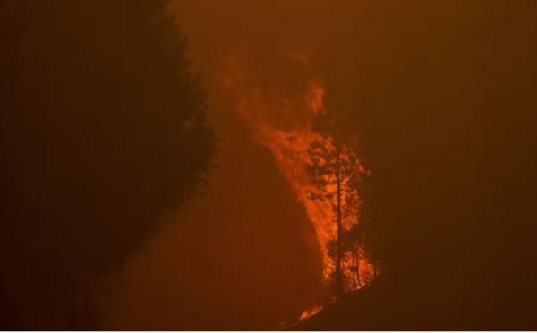 Mare latinu : Les mégas feux de l'été en Méditerranée, peut-on réduire les risques ?